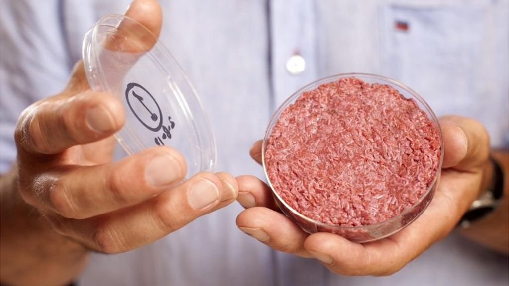 MZANSI MEAT COMPANY AIMS TO PRODUCE POPULAR DELICACIES IN A HIGH-TECH WAY